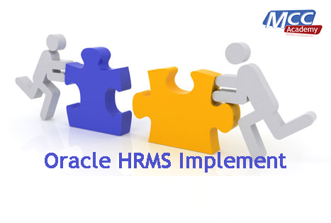 Oracle HRMS Implementer